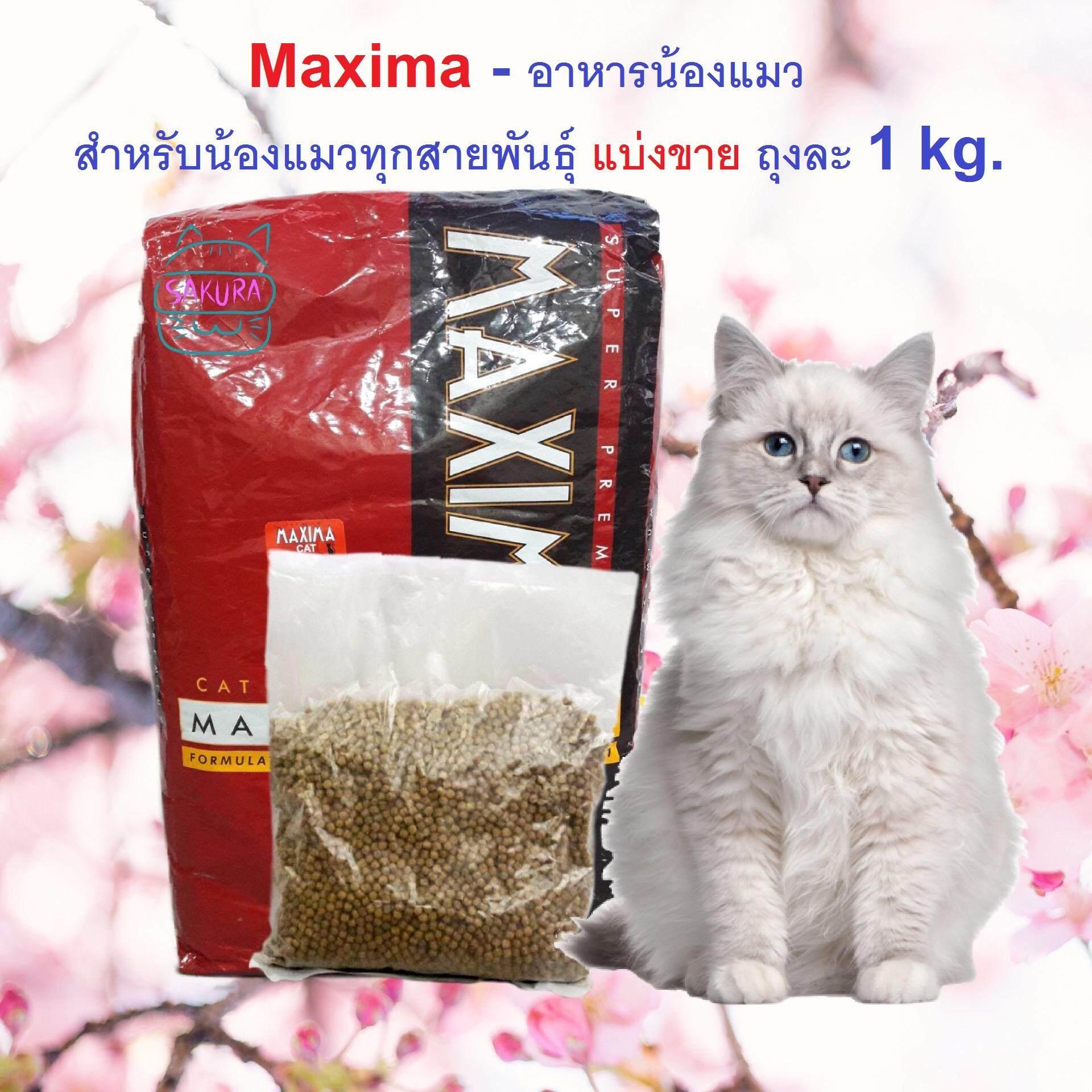แม็กซิม่า อาหารแมว Maxima Cat Food 1 Kg อาหารแมวโต แบ่งขาย สูตรเนื้อแกะ บำรุงขน ผิวหนัง และป้องกันการเกิดโรคนิ่ว 1 กิโลกรัม By Oujo Sakura Kitten.