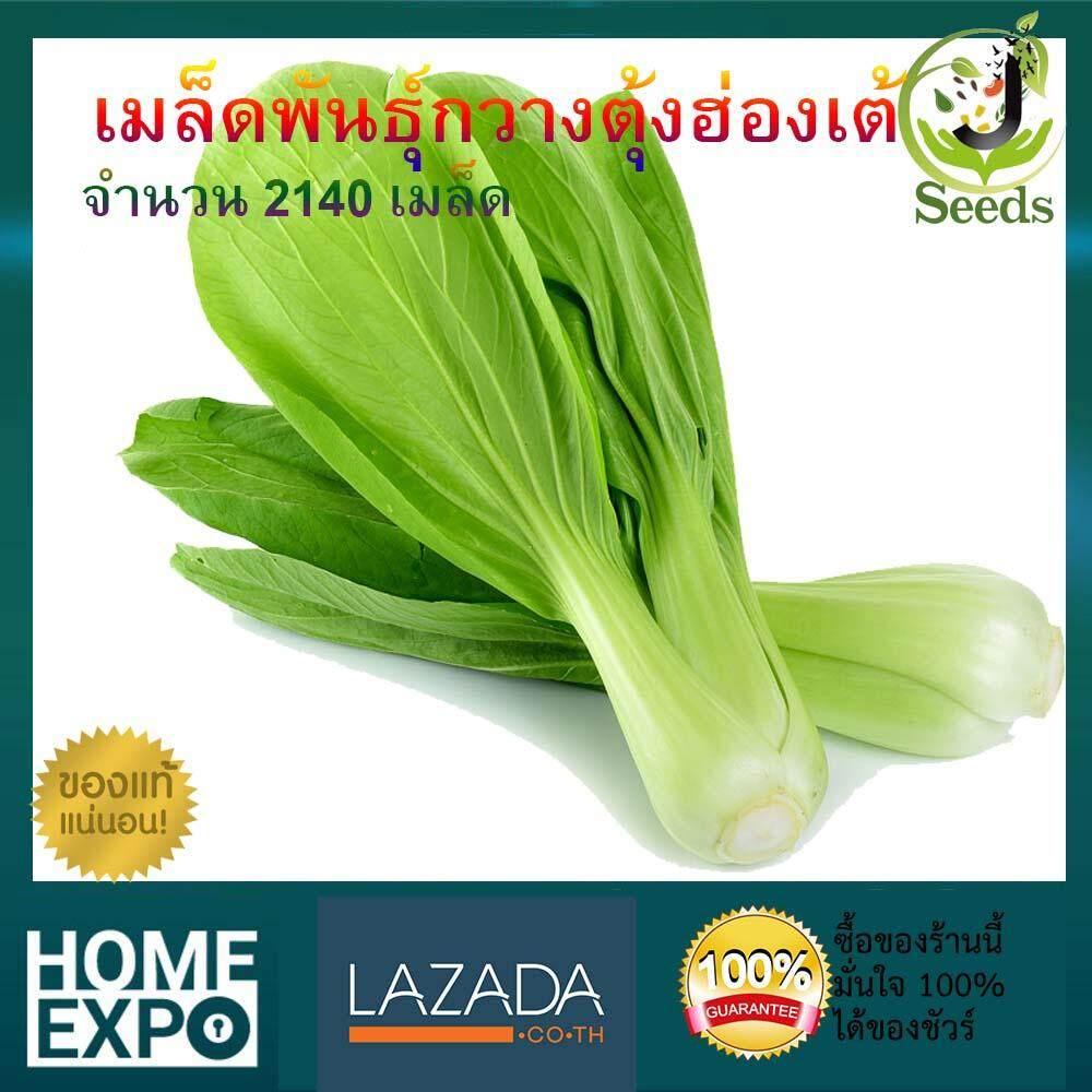 เมล็ดพันธุ์กวางตุ้งฮ่องเต้ จำนวน 2140 เมล็ด ปลูกง่าย โตเร็ว By Jenseed กวางตุ้ง เมล็ดพันธุ์ เมล็ดพันธุ์ผัก เมล็ดพันธุ์พืช ผักสวนครัว.