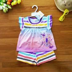 ซื้อ Baby Elegance ไซส์ 4 3 4 ปี เสื้อผ้า เด็กผู้หญิง เซ็ต 2 ชิ้น เสื้อแขนปีก ผ้าสีสไลด์โทนม่วงฟ้า ผีเสื้อน่ารัก กางเกงขาสั้นริ้วหลากสีสดใสเอวยางยืด ออนไลน์