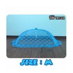 ซื้อ Dgh มุ้งครอบนอนสบายสำหรับเด็กอ่อน Size M สีฟ้าทะเล กรุงเทพมหานคร