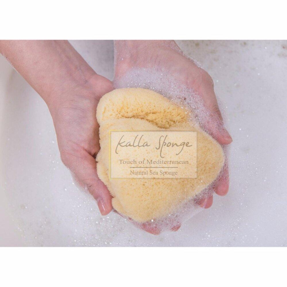 แนะนำ ฟองน้ำธรรมชาติ จากทะเลเมดิเตอร์เรเนียน ชนิด Fine Silk ขนาด L สีเหลือง