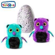 HATCHIMAL - ตุ๊กตาฟักไข่ - HATCHIMAL GLITTERING GARDEN - BEARAKEET (TRU-35912)