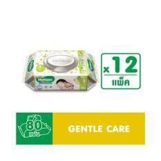 ขาย ขายยกลัง Huggies Babywipe Gentle Care 80 Sheet X 12 Pack ใน สมุทรปราการ