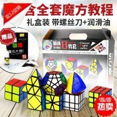 Sheng Shou ชุดกล่องของขวัญ รูบิคคิวบ์ 8 ชิ้น.