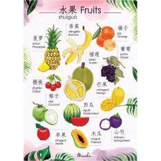 Menithas Fruit Chinese-English By Mama&menitha Baby.