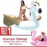 โปรโมชั่น ห่วงยาง Pegasus Big Size Free ห่วงยาง Flamingo ห่วงยางแฟนซี แพยางเป่าลม ม้าบินเพกาซัส ถูก