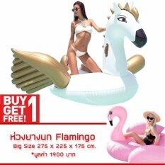 ซื้อ ห่วงยาง Pegasus Big Size Free ห่วงยาง Flamingo ห่วงยางแฟนซี แพยางเป่าลม ม้าบินเพกาซัส ออนไลน์