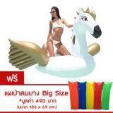 ราคา ห่วงยาง Pegasus Big Size Free แพยางมูลค่า Free แพยางเป่าลม มูลค่า 490 บาท White Gold ที่สุด