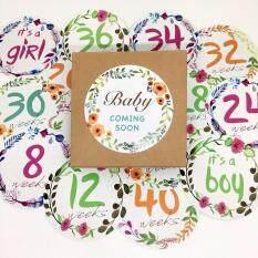 สติ๊กเกอร์อายุครรภ์สำหรับถ่ายรูป Pregnancy Milestone Belly Sticker.