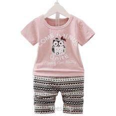 ทบทวน ที่สุด Yeeshop ชุดเสื้อผ้าเด็กเข้าชุด ลายนกฮูกน่ารัก สีชมพู 110 1 3Years P111