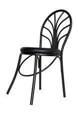 ขาย Inter Steel เก้าอี้เหล็ก มีพนักพิง รุ่น Ch555 โครงดำ เบาะสีดำ ออนไลน์
