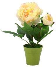 ซื้อ U Ro Decor ดอกไม้กระถาง รุ่น Big Red Peony A Yellow นนทบุรี