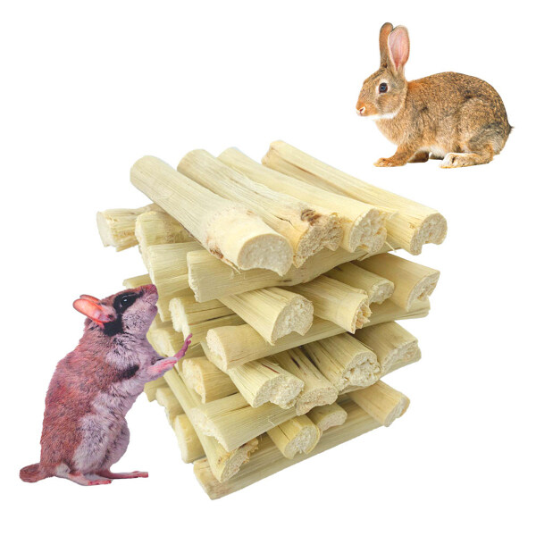 SUPER CUTE 4 Chuột đồng Con vẹt Molar Thỏ Làm sạch răng Đối xử Thanh nhánh Đồ chơi nhai Đồ ăn nhẹ cho thú cưng Tre ngọt ngào