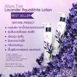 ราคา Allure Tree โลชั่นดอกลาเวนเดอร์ Allure Tree ออนไลน์