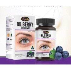 Auswelllife Bilberry ออสเวลล์ไลฟ์ บิลเบอร์รี่ 10000 Mg. อาหารเสริมบำรุงสายตาเกรดพรีเมี่ยม (บรรจุ 60 แคปซูล ทานได้ 2 เดือน) By Healthy Plus No.1.