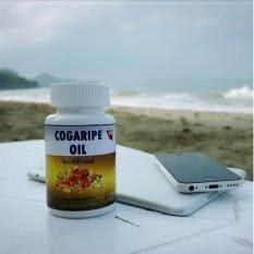 ขาย Cogaripe Oil โคการิเป้ ออยล์ เป็นต้นฉบับ