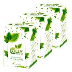 โปรโมชั่น Colly Chlorophyll Plus Fiber คอลลี่ คลอโรฟิลล์ พลัส ไฟเบอร์ 15 ซอง 3 กล่อง Colly