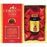 ราคา Cordy Plus คอร์ดี้ พลัส 30 แคปซูล เสริมระบบภูมิคุ้มกันในร่างการ เพิ่มการไหลเวียนของเลือด ชะลอการเสื่อมของเซลล์ในร่างกาย Cordy Plus