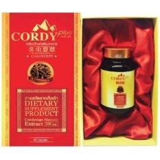 ขาย Cordy Plus คอร์ดี้ พลัส 30 แคปซูล เสริมระบบภูมิคุ้มกันในร่างการ เพิ่มการไหลเวียนของเลือด ชะลอการเสื่อมของเซลล์ในร่างกาย ผู้ค้าส่ง