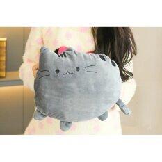 ขาย Cute Warmer กระเป๋าน้ำร้อนไฟฟ้า ลายแมว ถอดซักได้ สีเทา Cute Warmer เป็นต้นฉบับ