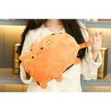 ราคา กระเป๋าน้ำร้อนไฟฟ้า ถอดซักได้ ลายแมว สีส้ม กรุงเทพมหานคร