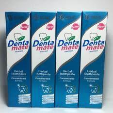 ขาย Dentamate 100 G ยาสีฟันเดนตาเมทขนาด 100 กรัม แพ็ค 4 หลอด Dentamate ถูก