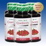 ขาย ซื้อ Herbal One Cranberry Extract สารสกัดจากผลแครนเบอร์รี 60 Caps 6 Packs