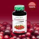 ราคา Herbal One Cranberry Extract สารสกัดจากผลแครนเบอร์รี 60 Cap ใน ไทย