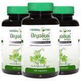 ขาย Herbal One Jiaogulan เฮอร์บัล วัน ปัญจขันธ์ 3 กระปุก ใหม่