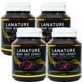ส่วนลด สินค้า Lanature Grape Seed ลาเนเจอร์ สารสกัดจากเมล็ดองุ่น ทานทุกวัน ฝ้า กระ จางลง ผิวพรรณดีจากภายใน บรรจุ 30 เม็ด 4 กระปุก