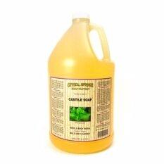 ซื้อ Natural Multi Purpose Liquid Castile Soap Cleanser Mint Delight 1 Gallon 128 Fl Oz 3 785 Ml Unbranded Generic ถูก