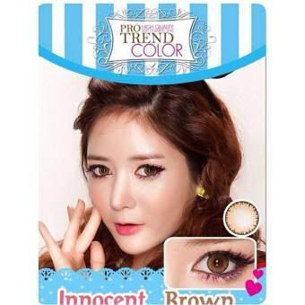 Protrend Color คอนแทคเลนส์ รุ่น Innocent Brown ค่าสายตา -3.00