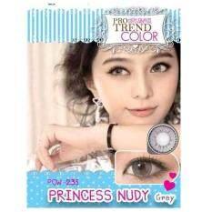 ซื้อ Protrend Color คอนแทคเลนส์ รุ่น Princess Nudy Gray ค่าสายตา 1 25 Protrend Color ถูก