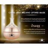 ขาย Camel Milk Cream ครีมน้ำนมอูฐดูไบ ขนาด 50 Ml 1 กระปุก ออนไลน์