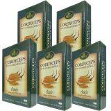 ซื้อ ถั่งเช่า ไฟโตโกลด์ Phytogold Cordyceps 30 Capsule X 5 Box Phytogold ออนไลน์