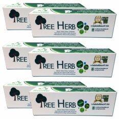 ซื้อ Tree Herb สูตรสมุนไพรสกัดเข้มข้น 6 กล่อง ถูก กรุงเทพมหานคร