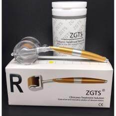 ราคา Zgts Titanium Derma Roller Sizes 2 5 Mm เข็มกลิ้งรักษาหลุมสิว และ เพิ่มเรียบเนียน เดอมาโรลเลอร์ ออนไลน์ กรุงเทพมหานคร