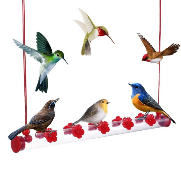 OWMXZL Máy Cho Chim Ăn Ngoài Trời, Ống Trong Suốt Dụng Cụ Cho Chim Ăn Ruồi Dễ Sử Dụng, Đồ Dùng Cho Chim Ruồi