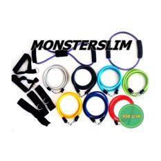 ทบทวน ชุดยางยืด เกรดเพาะกาย 15 ชิ้น Monsterslim รุ่น Hulk Set Monsterslim