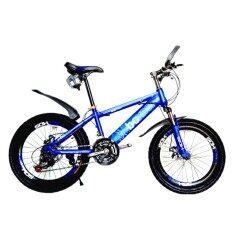 ราคา Expert Group จักรยาน เสือภูเขา Boxds 20 นิ้ว 21 เกียร์ซิมาโน่ บังโคลนหน้า หลัง โช้คหน้า ดิสเบรคหน้า หลัง สีน้ำเงิน ออนไลน์