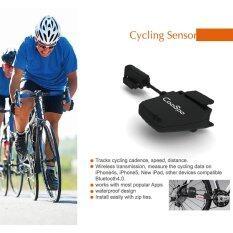 โปรโมชั่น Outdoor Bike Bicycle Cycle Speed Cadence Sensor Bluetooth Le Smart Fitness For Iphone For Ipad Intl Unbranded Generic