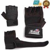 ส่วนลด สินค้า Schiek Lifting Glove ถุงมือยกน้ำหนัก ถุงมือฟิตเนส Fitness Glove Size M Black