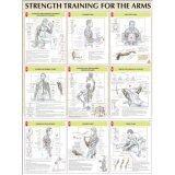 ราคา ราคาถูกที่สุด Viva โปสเตอร์สีประกอบการฝึกกล้ามเนื้อแขน Strenght Training For The Arms Poster ขนาด24X31