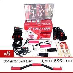 โปรโมชั่น Weider X Factor Door Gym เครื่องออกกำลังกาย ติดตั้งประตู แถมฟรี บาร์เสริม Curl Bar ไทย