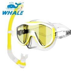 ปลาวาฬผู้ใหญ่ดำน้ำชุดป้องกันรังสียูวีหน้ากากว่ายน้ำหน้ากาก Freediving Snorkel ชุด Whale ถูก ใน จีน
