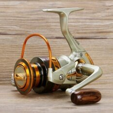 ทบทวน Wwang Metal High Speed Left Right Interchangeable Rocker Fishing Reels Spinning Wheel Gear Ef500 Intl