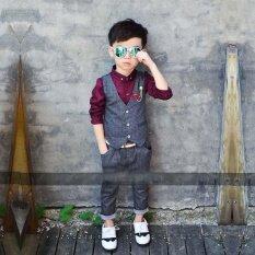 ส่วนลด 2 ชิ้นชุดเด็กชาย อย่างเป็นทางการชุดพรหมงานแต่งงานงานแต่งงานเสื้อผ้าเด็ก ชายเสื้อกั๊ก สีเทา Unbranded Generic