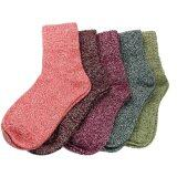 ขาย 5 Pairs Women Wool Cashmere Thick Warm Soft Solid Casual Sports Socks Winter Intl Unbranded Generic ถูก