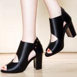 ราคา Laikajindun รองเท้าส้นสูงเปิดนิ้วเท้า สีอูฐ สีน้ำตาลอ่อน สีดำ ไลคร่า 6225 สีดำ ไลคร่า 6225 สีดำ Unbranded Generic ฮ่องกง