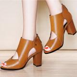 ขาย ซื้อ ออนไลน์ Laikajindun รองเท้าส้นสูงเปิดนิ้วเท้า สีอูฐ สีน้ำตาลอ่อน สีดำ ไลคร่า 6225 อูฐ ไลคร่า 6225 อูฐ